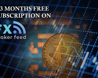 All lessons bundle + 3 months of free subscription on FXBrokerFeed!